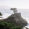 Scenic drive through Pebble Beach, California