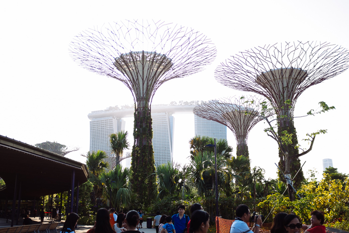singapore2013-041