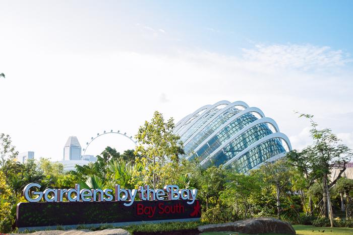 singapore2013-042