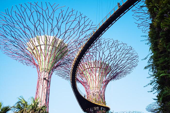 singapore2013-044