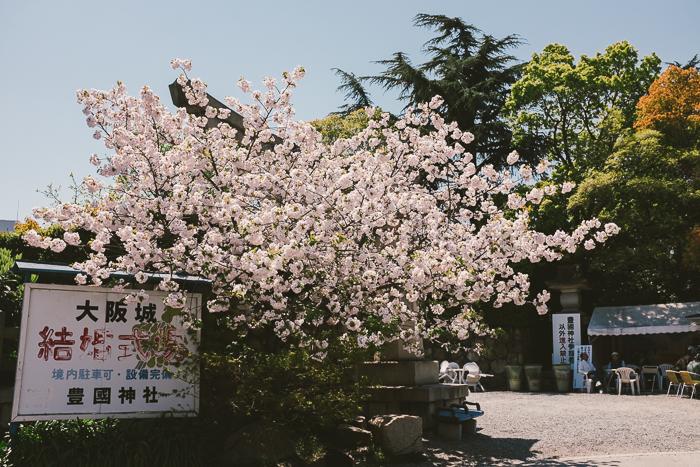 japan-day03-047