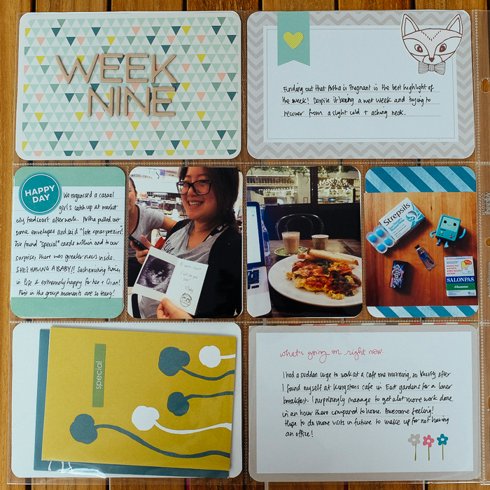 projectlife2014-055