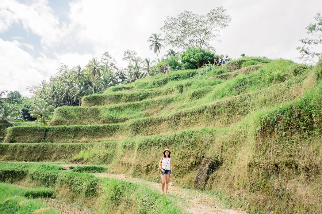 ubud-tegallalang-rice-fields-12