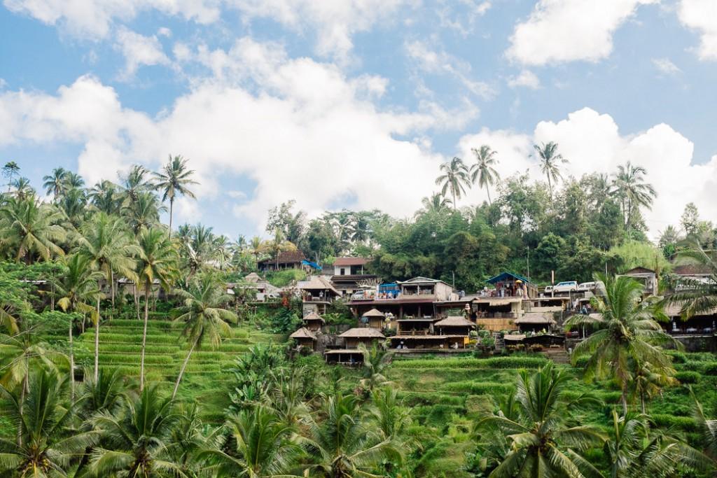 tegallalang rice fields, ubud, bali